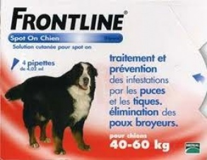 Illustration Spot-On XL Chien de 40-60 kg - 4 pipettes