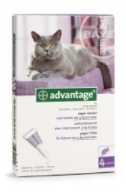 Illustration Advantage 80 pour chat 4 kg et plus - 4 pipettes