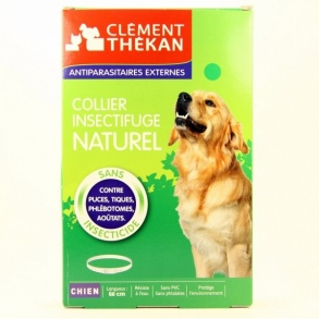 Illustration Collier Insectifuge Naturel - Chien
