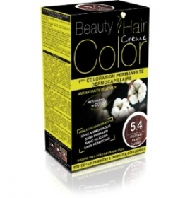 Illustration BEAUTY EXPERT COLOR CHATAIN CLAIR CUIVRE 5.4 160ML