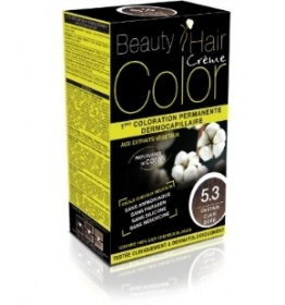 Illustration BEAUTY EXPERT COLOR CHATAIN CLAIR DORE 5.3 160ML