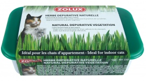 Illustration HERBE À CHAT DÉPURATIVE NATURELLE ZOLUX