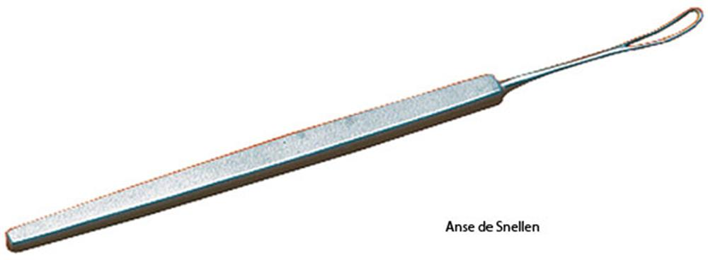 Illustration Anse de Snellen