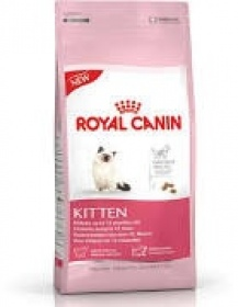 Illustration Croquettes Royal Canin kitten 36 pour chaton