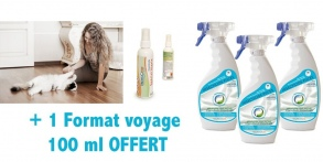Illustration Insecticide PACK 3+ 1 Traitement ANTI PUCES Textile et Parquet