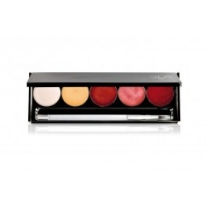 Illustration Palette de 5 gloss Cake Luxe Vip