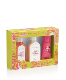 Illustration Coffret Corps et Mains Pear and Pink Magnolia